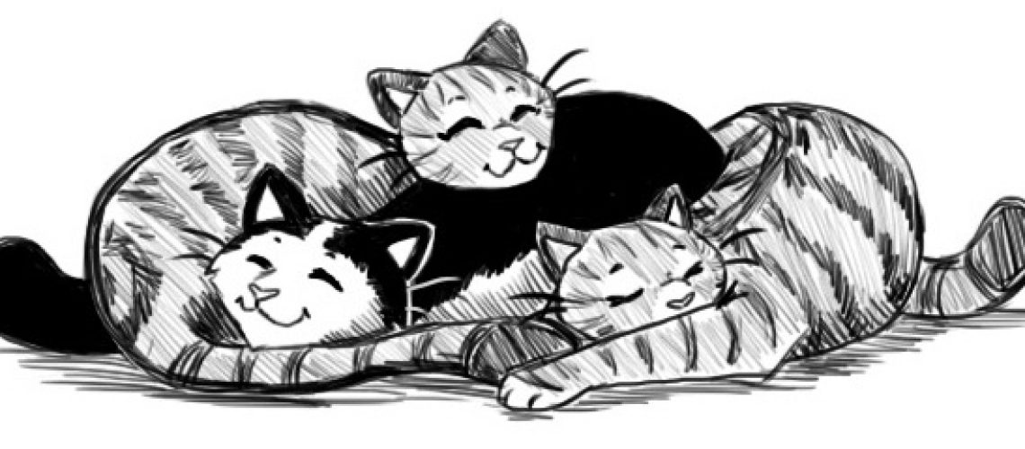 Snuggly kitties